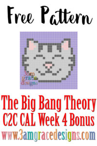 The BBT C2C CAL – Week 4 **Bonus Square**