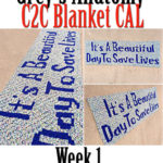 Grey's Anatomy C2C CAL – Week 1