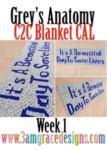 Grey's Anatomy C2C CAL – Week 1