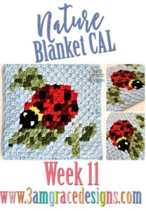 Nature Blanket C2C CAL – Week 11