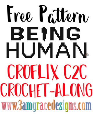 Being Human C2C crochet pattern and tutorial for our Croflix graphgan project